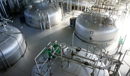 培養タンクの2階フロアー